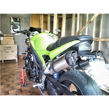 Special Titanium Roadsitalia Triumph Speed Triple 1050 2005-2015