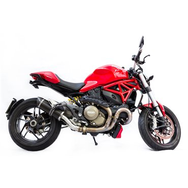 Special Carbon Roadsitalia Ducati Monster 1200 2014-2016